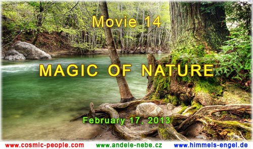 MEDITATION FILM - MAGIC OF NATURE